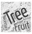 Caring Properly for your Fruit Tree Word Cloud vector image vector image