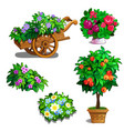 cart with flowers orange tree roses and bouquets vector image vector image