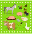 collection farm animals sheep rabbit cow vector image