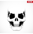 Human skull in sketch style vector image vector image