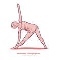yoga extended triangle pose utthita trikonasana vector image vector image