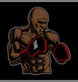 coloured of box fighter on the dark background vector image