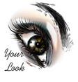fashion background with beautiful female eye vector image