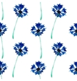 Seamless pattern with cornflowers vector image vector image