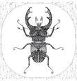 Coloring page of Balck Bug zentangle vector image