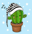 cartoon sleeping cactus on a blue background vector image