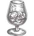 hand drawn cocktail vintage glasse with liquors vector image