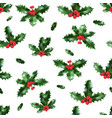 holly isolated pattern vector image