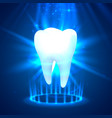 tooth on a blue background template design vector image vector image
