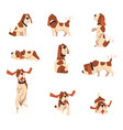 beagle dog in various poses set cute funny animal vector image