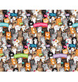 cats parade pattern vector image