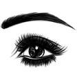 eye on white background woman logo vector image