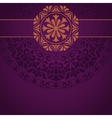 Floral Indian pattern vector image vector image