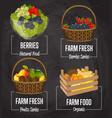 organic farm fruit concept set vector image