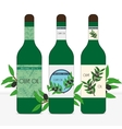 Set of three bottles for olive oil vector image