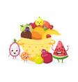 summer fruits in basket vector image